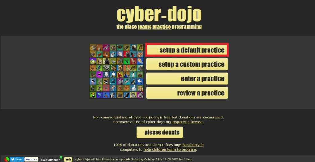 cyber.dojo_トップ画面選択